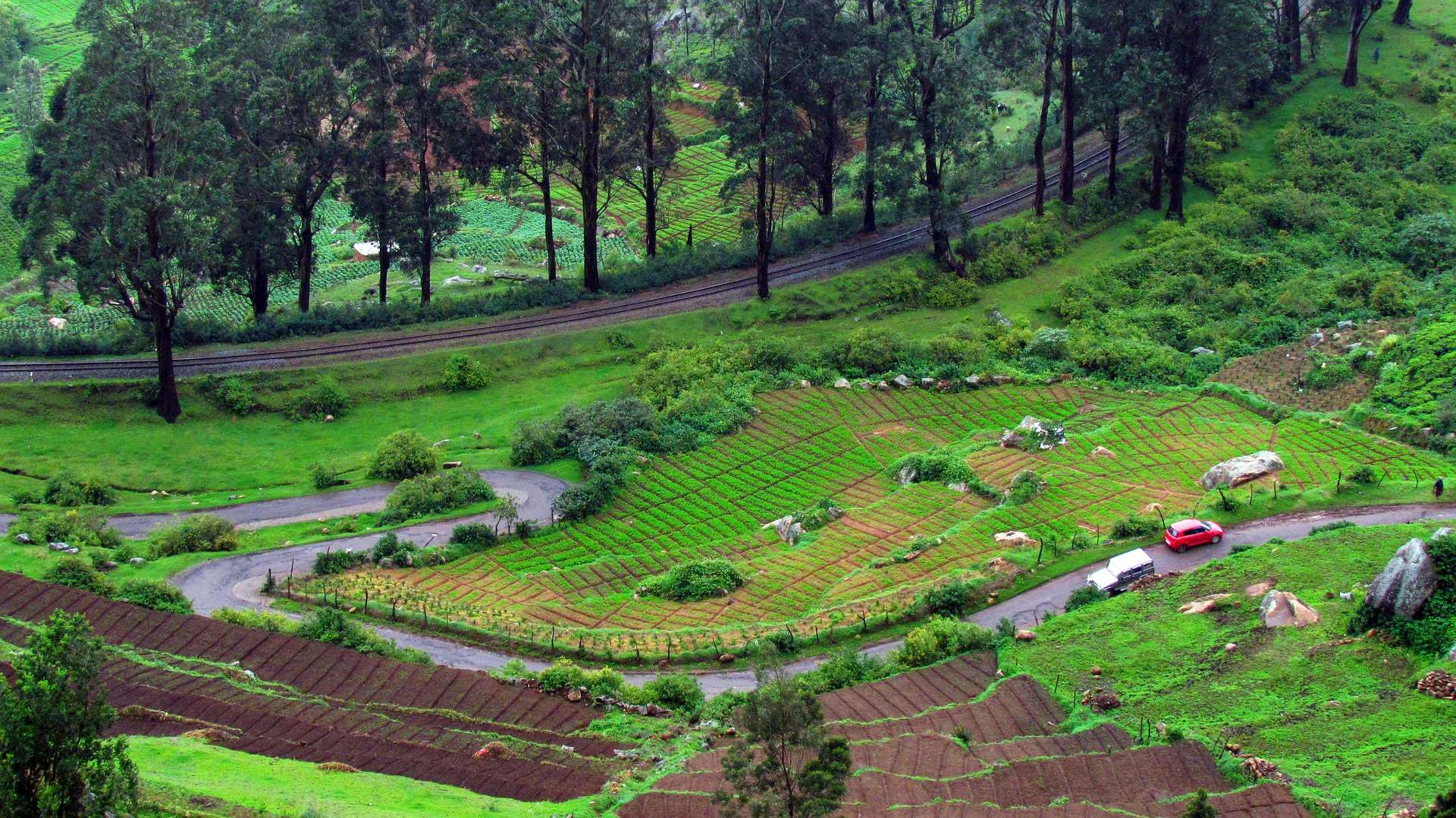 Honeymoon Destinations in India - Ooty